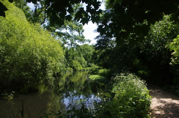 On the Wandle Trail in Mitcham