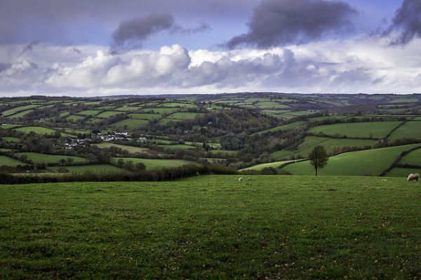 Looking down on Wiveliscombe © Steve Bruce