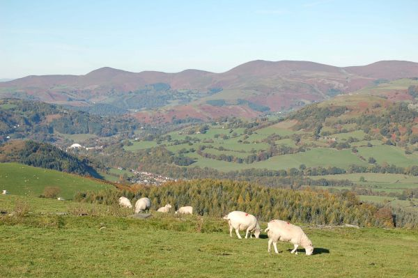 Llangollen - Llantysilio in background