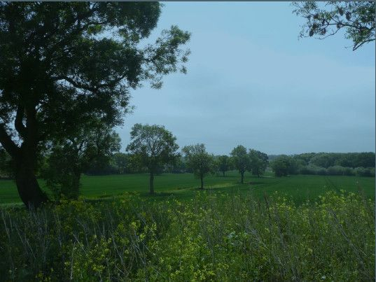 Landscape near Coton © David Wragg
