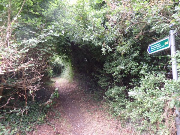 Path towards Peters Green