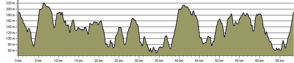 Ashdown Forest Perambulation - Route Profile