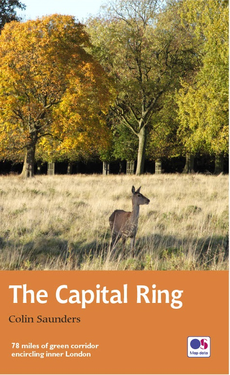 capital ring guide