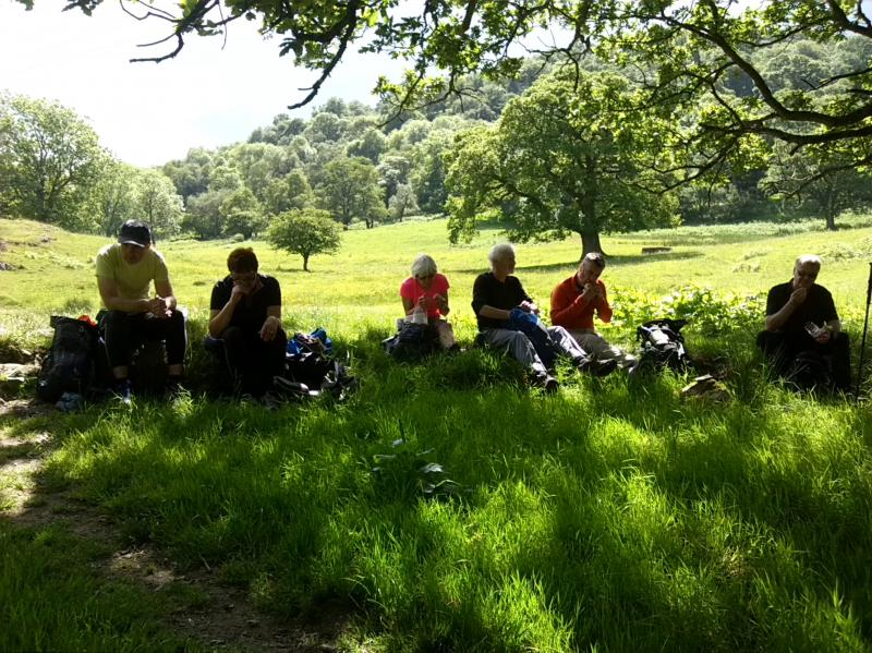 Break time in the shade on the Mardale Wander