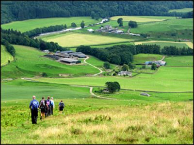 4.ROLLING COUNTRYSIDE