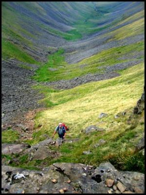 14.BARRIE IN HIGH CUP GILL