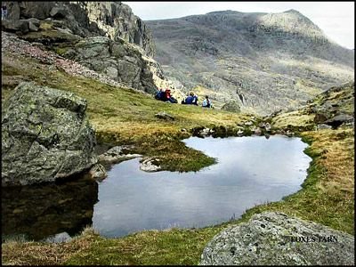 28.FOXES TARN