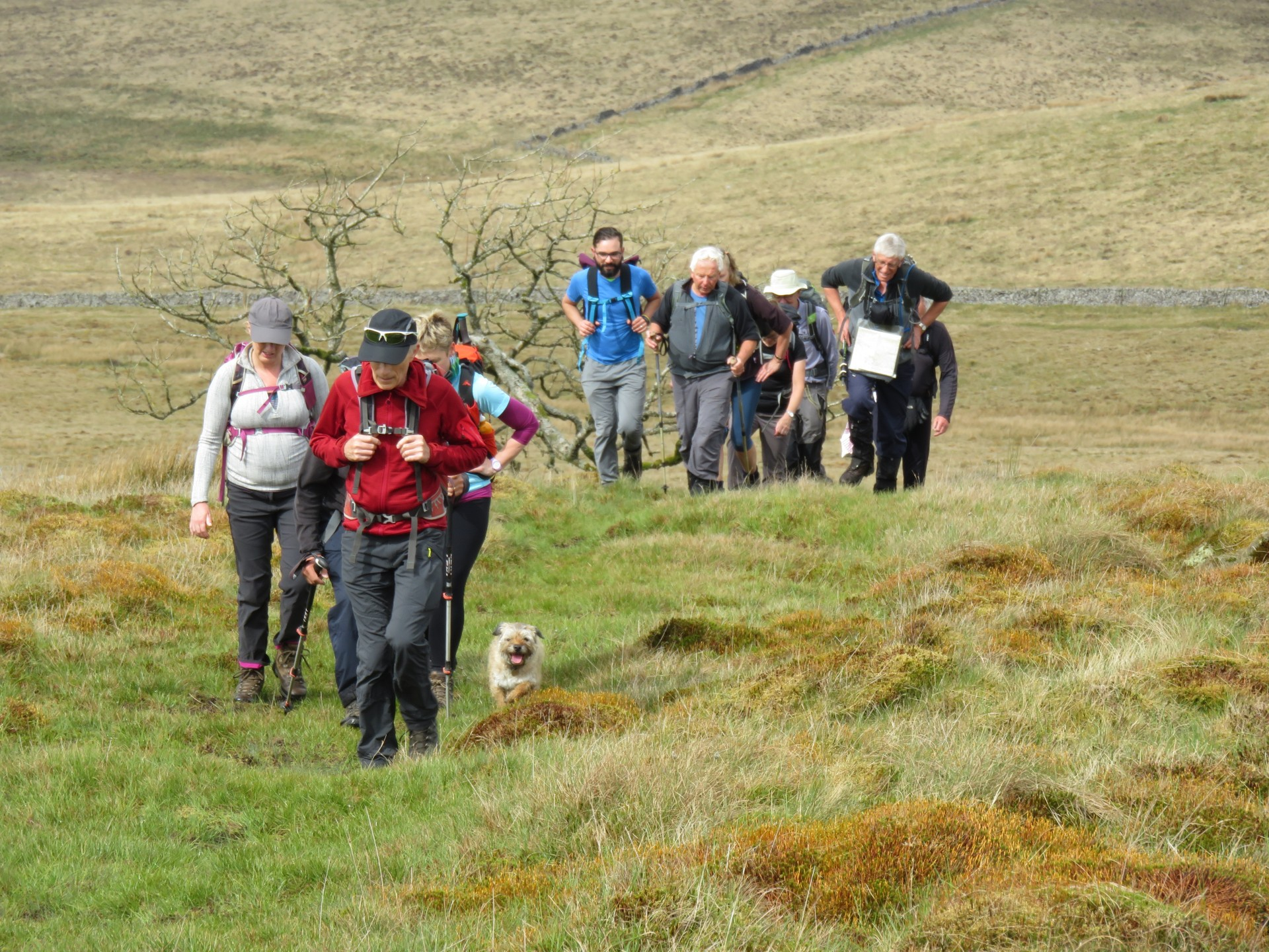 Climbing the slopes of Aye Gill Pike