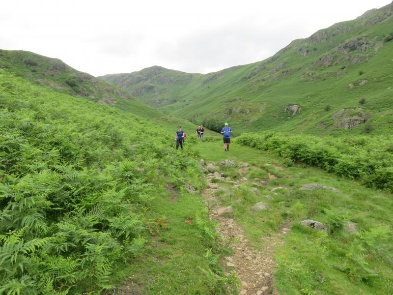 Gradual Descent to Grasmere