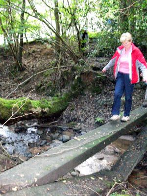 Wendy crossing broken bridge