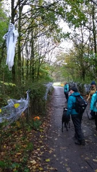 an introduction to the haunted trail Community news on the edge  introduction to manufacturing class - january  fall festival & haunted forest oct 31: rail trail - nov 7.