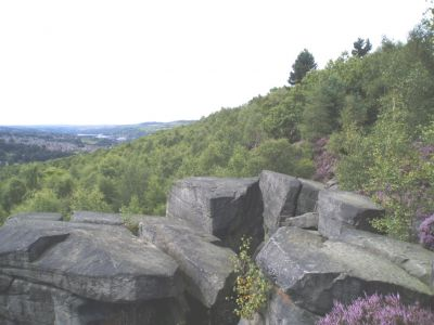 12 - Wharncliffe Crags