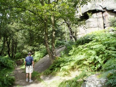 13 - Wharncliffe Crags