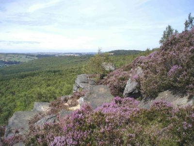 11a Wharncliffe Crags