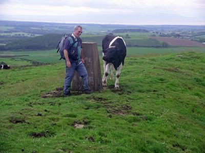 Need to Keep on Mooving Despite Being On Top