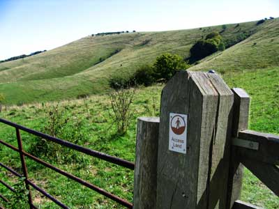 Access land on the South Downs